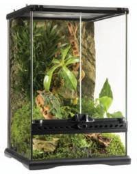 Combo Glass Terrarium and Compact Top 2