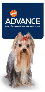 Pienso Advance especial para Yorkshire Terrier