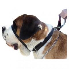 Collar antitirones para perros Canny Colossus