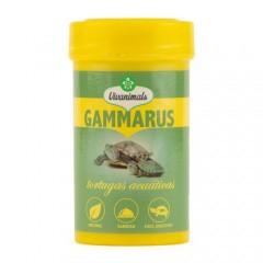 Gammarus para tortugas acuáticas Vivanimals