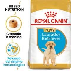 Royal Canin Labrador Retriever Puppy pienso seco para cachorros