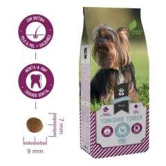Pienso Criadores Razas Yorkshire Terrier