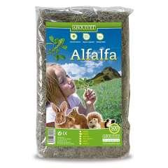 Alfalfa para roedores sabor Neutro