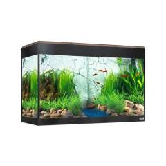 Acuario para peces Hagen Roma Led Bluetooth