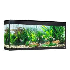 Acuario Roma Led Bluetooth para peces color Negro