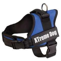 Arnés para perros Arquivet Xtreme color azul