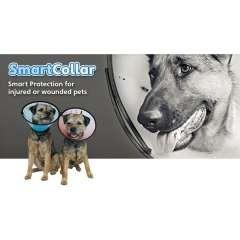 Collar Cono de recuperación Smart para perros