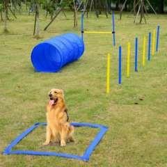 Set de Entrenamiento y Agilidad PawHut para Perros color Azul