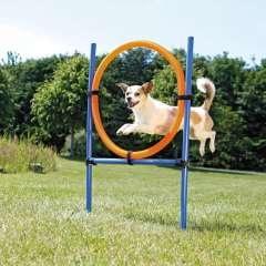 Aro de agilidad para perros color Azul y Naranja