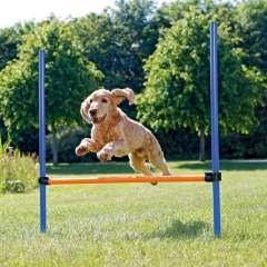 Valla de agilidad para perros color Azul y Naranja