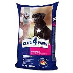 Club 4 Paws Pienso seco para cachorros de razas grandes Pollo