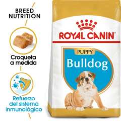 Royal Canin Bulldog Puppy pienso seco para cachorros