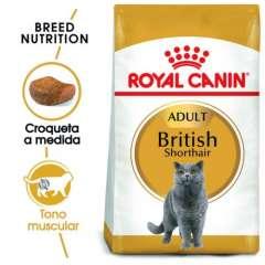 Royal Canin British Shorthair pienso para gato adulto