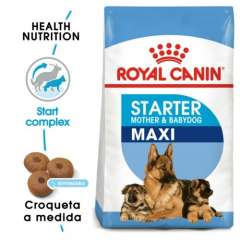 Royal Canin Maxi Starter Mother & Babydog pienso para cachorro