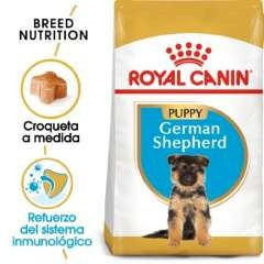Royal Canin Pastor Alemán Puppy pienso seco para cachorro