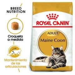 Royal Canin Maine Coon pienso para gato adulto