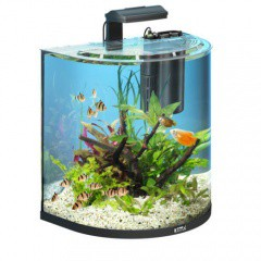 Acuario para peces Tetra AquaArt Explorer Line 60 litros