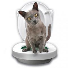 Kit de aprendizaje WC para gatos Litter Kwitter