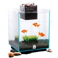 Kit de acuario Fluval Chi