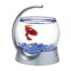 Mini Acuario para Bettas Tetra Betta Bowl