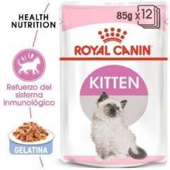 Royal Canin Kitten comida húmeda en gelatina para gatitos