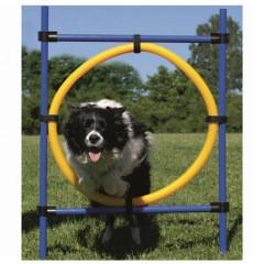 Aro de salto de agility para perros