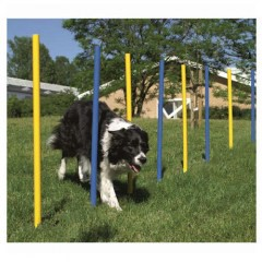 Slalom barras en zigzag de agility para perros