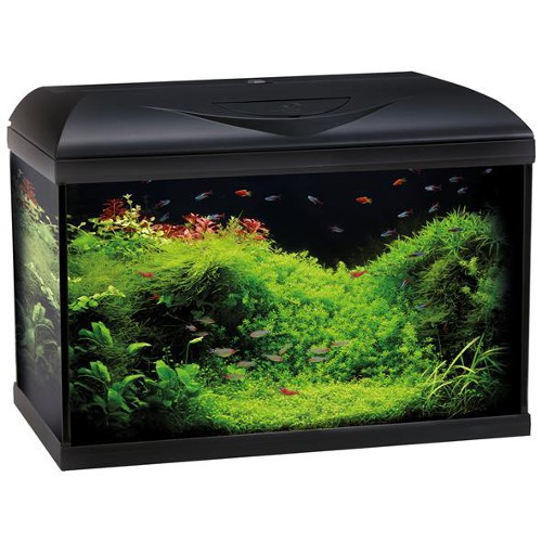 Acuario Wave Riviera Basic 60 Led