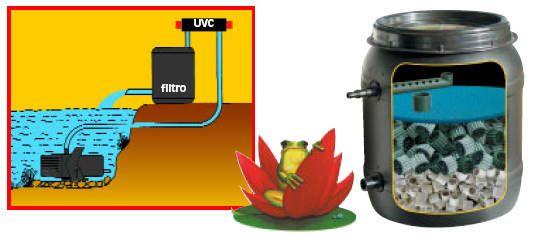 Sistemas de filtrado para estanques tiendanimal for Filtro estanque koi