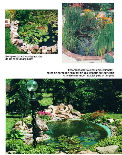 Preparativos y construcci n del estanque tiendanimal for Como construir un estanque en el jardin