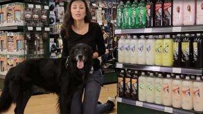 Cepillo Quitapelos para Mascotas Yes!pH