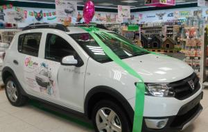 coche_dancia_aniversario_tiendanimal