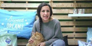 Análisis: Arena para gatos, ¿de sílice o aglomerante?